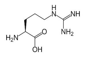 แอล-อาร์จินีน (L-Arginine)