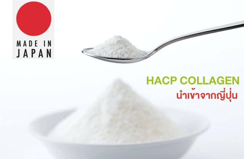 HACP COLLAGEN